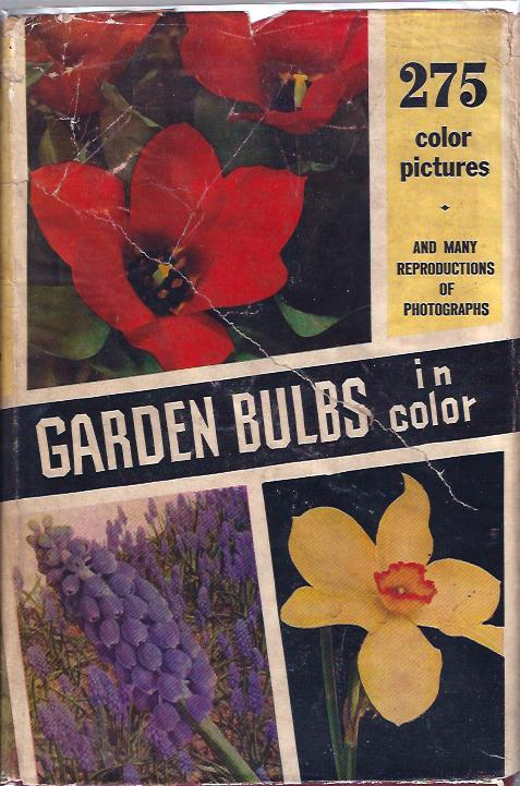 Image for Garden Bulbs in Color