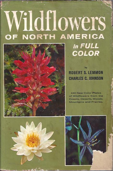 Image for Wildflowers of North America in Full Color
