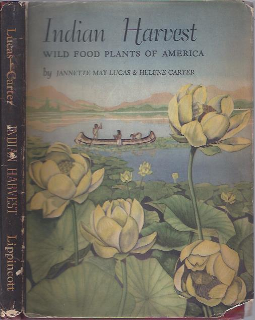 Image for Indian Harvest: Wild Food Plants of America