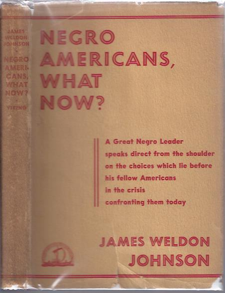 Image for Negro Americans, What Now?