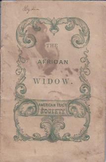 Image for The African Widow