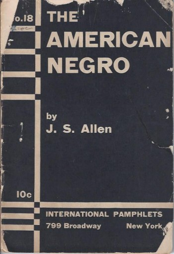 Image for The American Negro