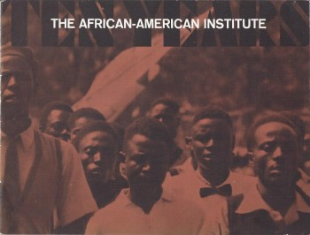 Image for The African-American Institute