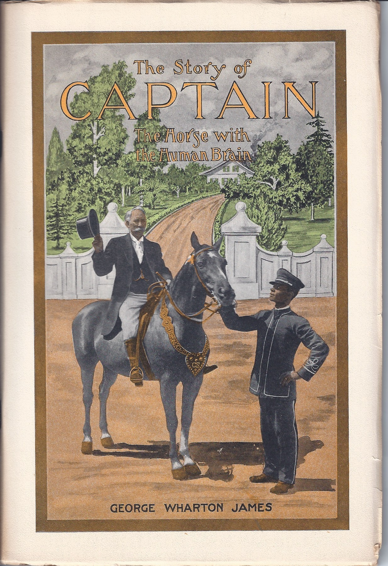 Image for The Story of Captain: The Horse with the Human Brain