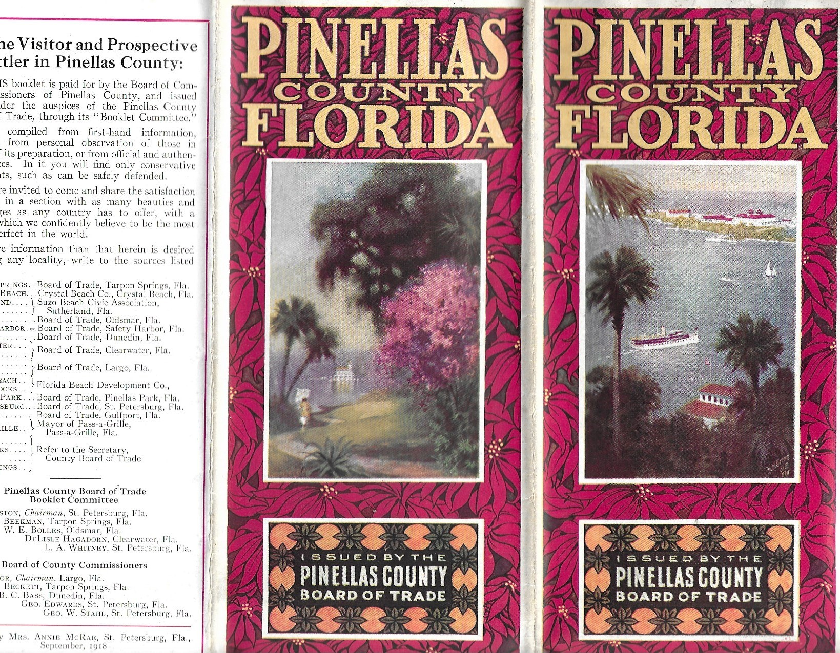 Image for Pinellas County Florida, Promotional Brochure