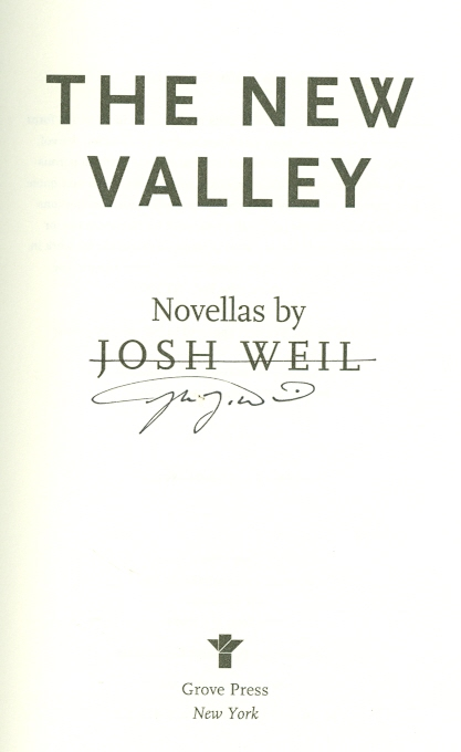 Image for The New Valley
