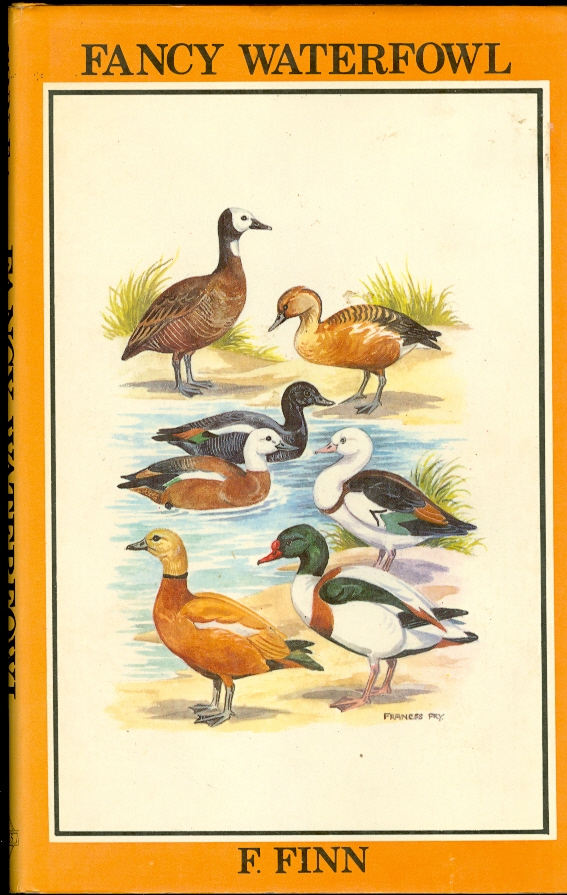 Image for Fancy Waterfowl