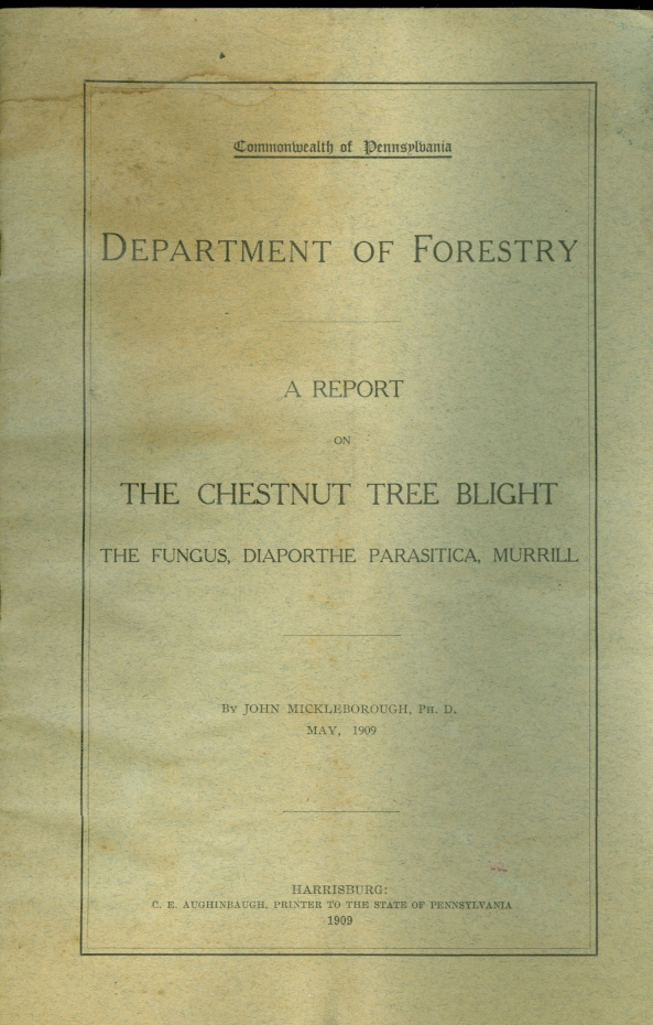 Image for A Report on the Chestnut Tree Blight The Fungus, Diaporthe Parasitica, Murrill