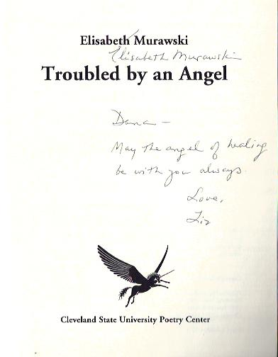 Image for Troubled by an Angel